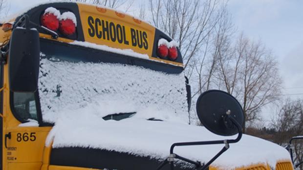 School Closures Toronto: Storm Closes Schools, Daycares, Adult Centres