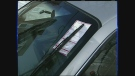 CTV Montreal: How to fight parking tickets