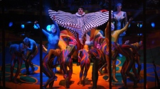 Members of Cirque du Soleil perform in the Saltimbanco show in the Papp Laszlo Budapest sports arena in Budapest, Hungary, Wednesday, Dec. 8, 2010. (AP / MTI / Peter Kollanyi)