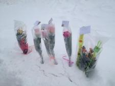 Triple murder Trois Rivieres