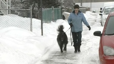 Karen Birkett slipped on Lachine's icy sidewalks last February.