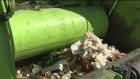 CTV Montreal:  St-Hyacinthe creating biogas