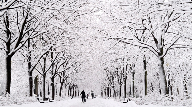 A Montrealer walks down a path in a Montreal park under snow covered trees following a snowfall Thursday, February 28, 2013 in Montreal. (THE CANADIAN PRESS/Paul Chiasson)