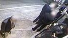 CTV Toronto: Violent assault caught on cam