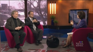 CTV Montreal: Political Panel