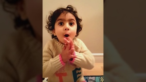 In a YouTube video released this week, two-year-old Sophia Popalyar names 10 ministers from Prime Minister Justin Trudeau's recently named cabinet.