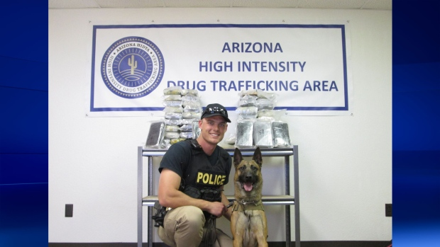 Arizona police dog found cocaine in car