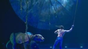 The Cirque du Soleil's new show Luzia is a journey through Mexico.