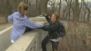 Mount Royal cleanup