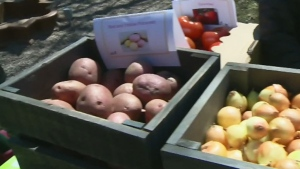 CTV Montreal: New life for ugly fruits