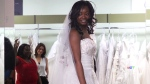 CTV Toronto: Wedding dress spending options