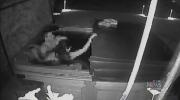 RCMP investigate: Lewd, nude in stranger's hot tub
