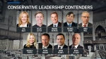 CTV News Channel: Party members hopeful to lead