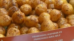 Sunday Bite: Laval's best loukoumades