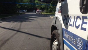 Police are investigating a shooting at a park in Pierrefonds-Roxboro.
