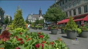 CTV Montreal: Restaurateurs filing injunction