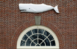 In this Tuesday, Dec. 8, 2015 file photo the likeness of a whale adorns a door at the New Bedford Whaling Museum in New Bedford, Mass. (AP Photo/Stephan Savoia, File)