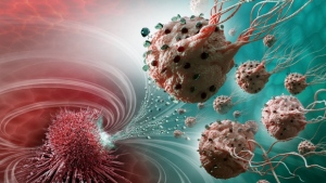 An illustration of bacteria-based nanorobots carrying medications into a tumour. (Polytechnique Montreal's NanoRobotics Laboratory)