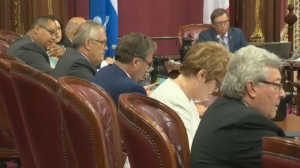 Hearings into what role politics may have played in the sale of hardware chain Rona have begun in Quebec City.