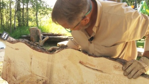 CTV National News: Dying trees into furniture