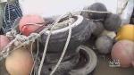 40 tonnes of garbage arrives in Delta