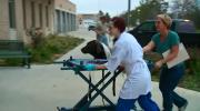 Estevan dog alive after spending weeks in well