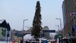 CTV Montreal: Imperfect tree